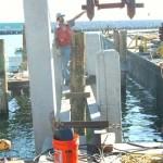 ant pier 2 construction